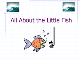 All About the Little Fish