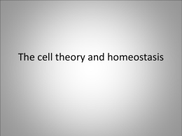 Review PPT – Life Science – Cells and Human
