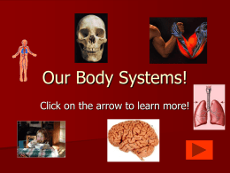 Our Body Systems!