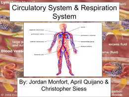 CirculatorySystem&RespirationSystemwebquest2