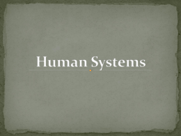 Human Body Systems PPT