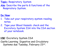 TOPIC: Respiratory System AIM: What are the parts & functions of