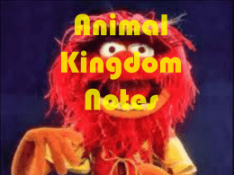 Animal Kingdom Notes