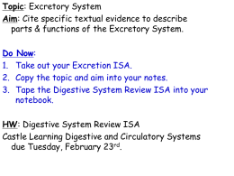 TOPIC: Excretory System AIM: What are the parts & functions of the