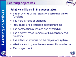 2. The Respiratory System