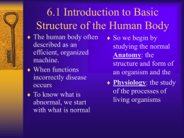 6.1 Introduction to Basic Structure of the Human Body