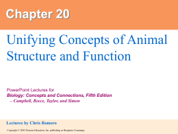 20. Unifying Concepts of Animal Structure and Function