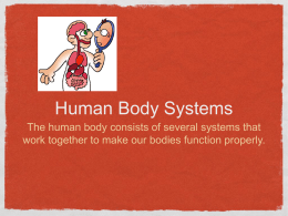 Human Body Systems The human body consists of several systems