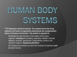Body Systems Unit Review part 2