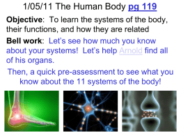 2010-2011 Human Body Systems iv