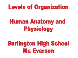PowerPoint Presentation - Burlington Area Schools