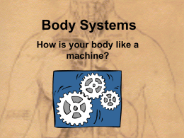 Body Systems - Cloudfront.net