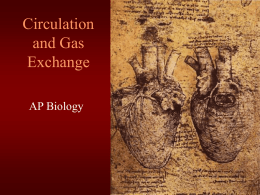 ch. 42 Circulation and Gas Exchange-2007