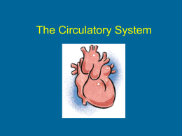 The Circulatory System - Madison County Schools