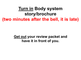 Turn in Body system story/brochure