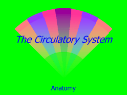The Circulatory System - Resuscitation Academy