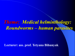 13. Medical helminthology Roundworms