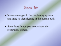 The Respiratory System - Course