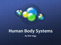 Human Body Systems - local.brookings.k12.sd.us