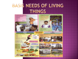 BASIS NEEDS OF LIVING THINGS