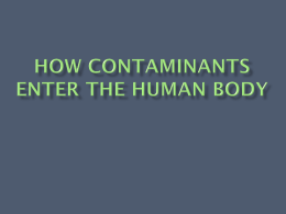 How Contaminants Enter the Human Body