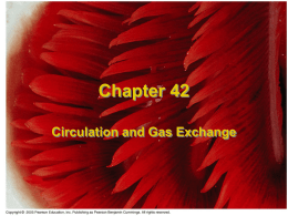 Chapter 42 pulmonary only 2008
