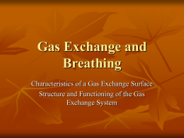 Gas Exchange and Breathing