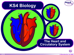 KS4_The_Heart_and_Circulatory_System