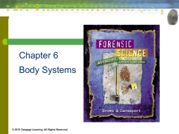 21 The Forensic Implications of Other Body Systems