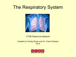 HS_7-4_Parts of the Respiratory System