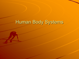 Human Body Systems - Warren County Public Schools
