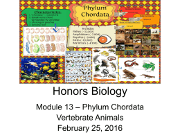 Honors Biology - WordPress.com