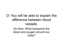 O: You will be able to explain the difference between blood vessels.