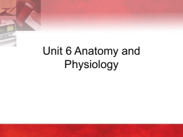 Unit 6 - Anatomy and Physiology