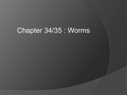 Chapter 7 - Worms - Fort Thomas Independent Schools