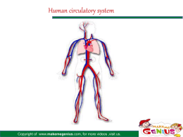 Human circulatory system Heart Lungs Heart Body