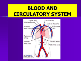 BLOOD AND CIRCULATORY SYSTEM