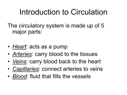 Introduction to Circulation