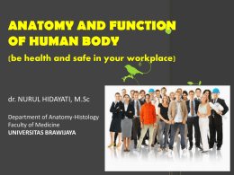 ANATOMY AND FUNCTION OF HUMAN BODY