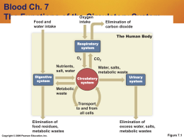 Blood Ch. 7 The Functions of the Circulatory System