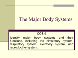 The Major Body Systems