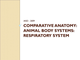 Comparative Anatomy: Animal Body Systems: RESPIRATORY