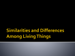 Similarities and Differences in Living Things