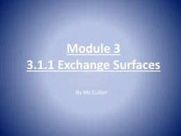 module 3 3.1.1 exchange surfacesx