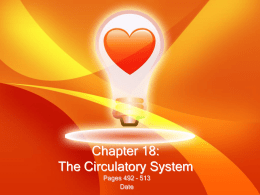 Chapter 18: The Circulatory System