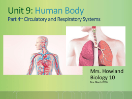 BIOLOGY CLASS NOTES UNIT 9 Human Body CIRCULATORY and