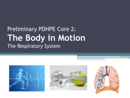 Preliminary PDHPE Core 2: The Body in Motion The Respiratory