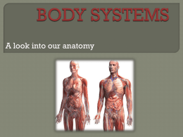 body systems - lderewal