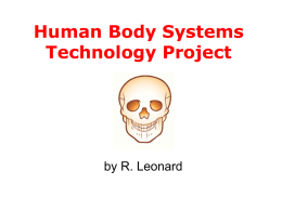Human Systems Notes File
