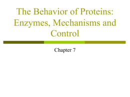 The Behavior of Proteins: Enzymes, Mechanisms
